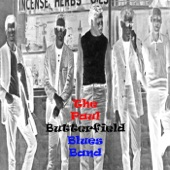 The Paul Butterfield Blues Band - Thank You Mr. Poobah