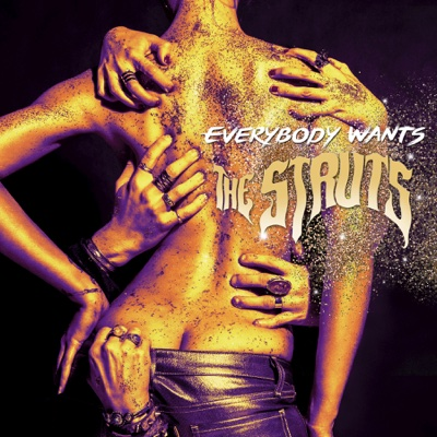 Everybody Wants - The Struts album