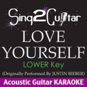 Love Yourself (Lower Key) [Originally Performed by Justin Bieber] [Acoustic Guitar Karaoke]