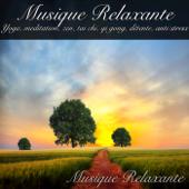 Musique Relaxante Yoga, Meditation, Zen, Tai Chi, Qi Gong, Détente, Anti Stress