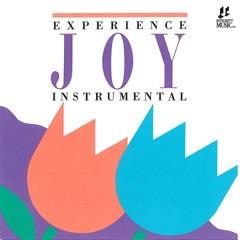 Joy: Instrumental by Interludes