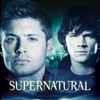 Supernatural, Season 2 wiki, synopsis