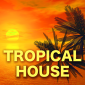 Tropical House – Best Electronic House Music Ever for Parties & Nightlife