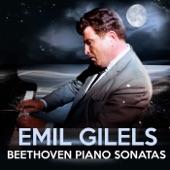 """Piano Sonata No.8 in C minor, Op.13 -""""Pathétique"""" : 3. Rondo (Allegro) artwork"""