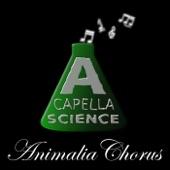 Animalia Chorus! - Single