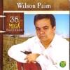 Wilson Paim