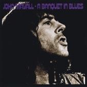 John Mayall - Sunshine