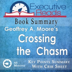 Book Summary: Crossing the Chasm: 45 Minutes - Key Points Summary/Refresher (Unabridged)