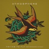 Trying to Fly (feat. Eric Mayson) - Single, Atmosphere