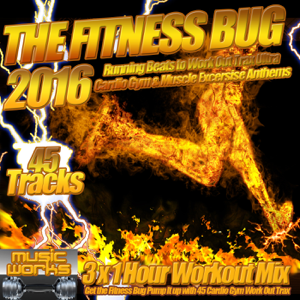 Various Artists - The Fitness Bug 2016