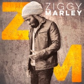 Ziggy Marley - Heaven Can't Take It