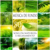 50 Música de Fundo: Sons da Natureza e Relaxamento, Música Ambiente para Dormir, Meditação, Yoga Pré-Natal, Pilates e Tai Chi, Som do Oceano para a Massagem e Spa, Música para Estudar