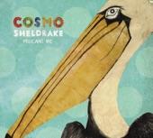 Cosmo Sheldrake - Pelicans We