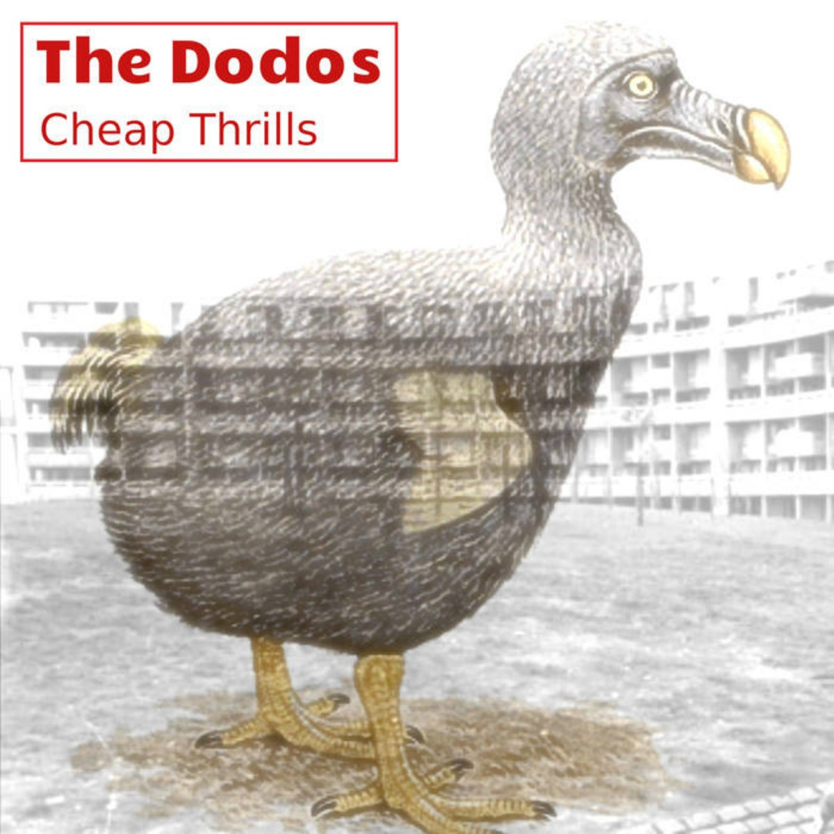 Cheap Thrills Album Cover by The Dodos