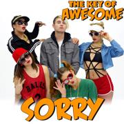 Sorry - Parody of Justin Bieber's