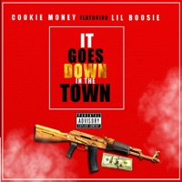 It Goes Down in the Town (feat. Lil Boosie) - Single Mp3 Download