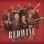 Red Wine Band - Es un Año Nuevo