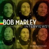 Bob Marley - Bob: Music And The Mission