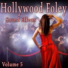 Hollywood Foley Sound Effects, Vol. 5