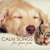 Pet Care Music Therapy - Calm Songs for Your Pets - Calming Music for Pet Cat or Dog, Gentle Sounds to Relax and Calm Down  artwork