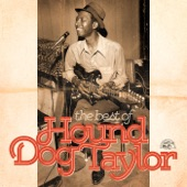 Hound Dog Taylor - Wild About You, Baby (Live)