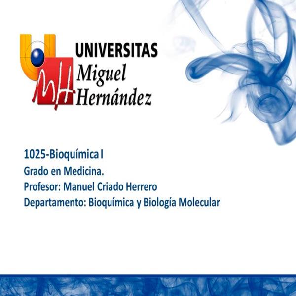 Bioquímica I (umh1025)
