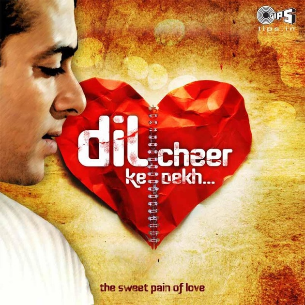 Pal Pal Yaad Teri Song Download: The Sweet Pain Of Love By Various Artists