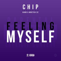 Feeling Myself (feat. Kano & Wretch 32) - Single Mp3 Download