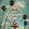 Monotone, Vol. 36 - Tech House Selection