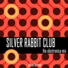 Silver Rabbit Club: The Electronica Mix, Vol. 14