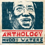 Muddy Waters - Sad Letter