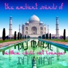 The Ambient Sounds Of Taj Mahal, Vol. 1 (Buddha Chill out Lounge)