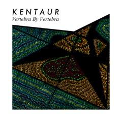Vertebra by Vertebra - EP