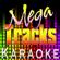 Mega Tracks Karaoke Band Photo