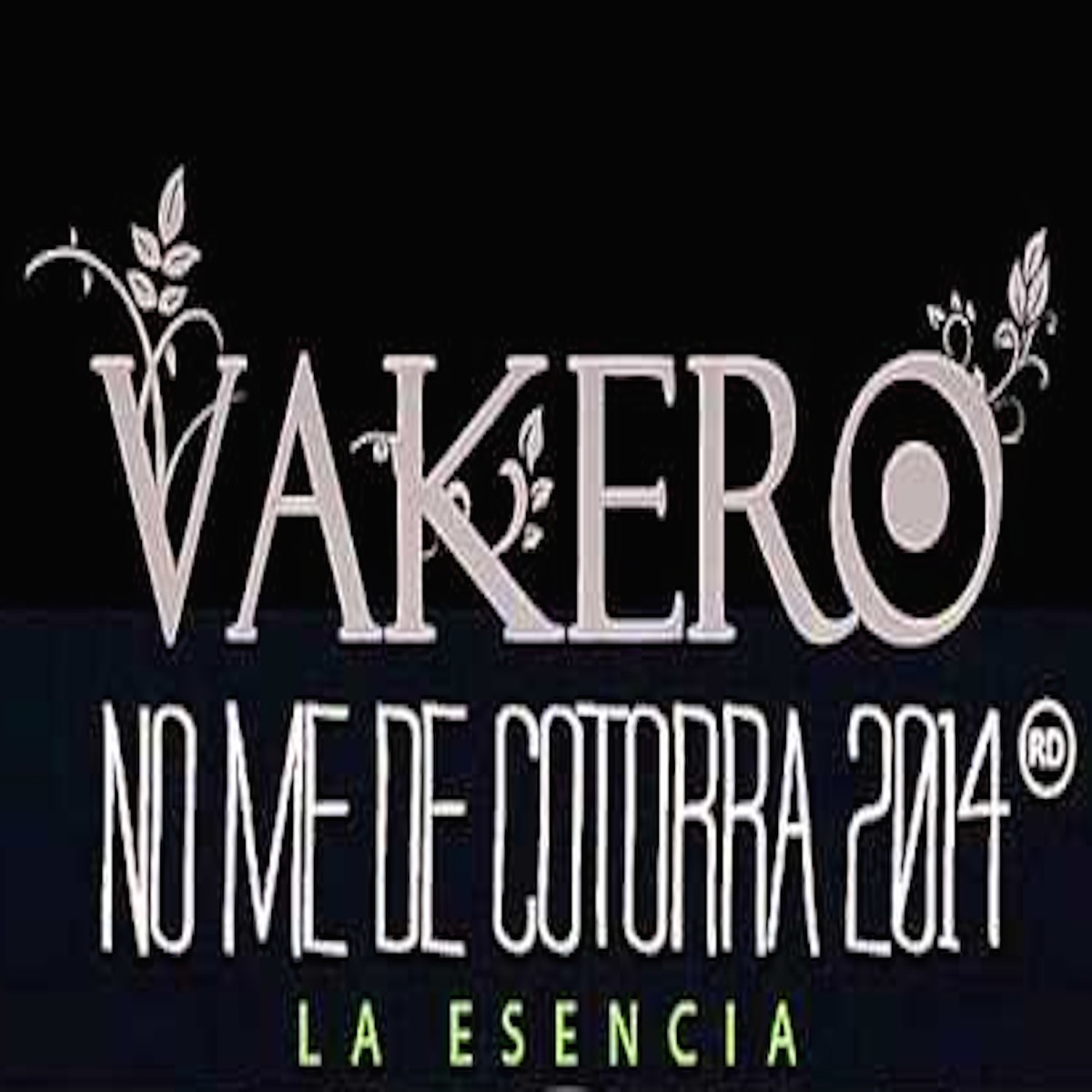 No Me de Cotorra Remix 2014 - EP Vakero CD cover