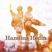 Johan Hedin - Himlapolskan / Da Lounge Bar