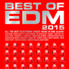 Best of EDM 2015 - Various Artists