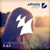 S.A.Y. - Single