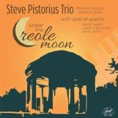 Steve Pistorius Trio - Arkansas Blues