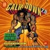 Calm Down 2.0 - Single, Busta Rhymes