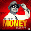 Bhour Saab - Salute to Money artwork
