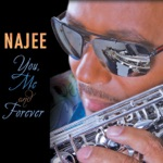 Najee - Fly With the Wind