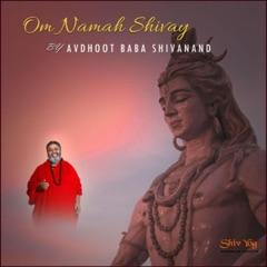 ShivYog Chants Om Namah Shivay - EP