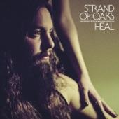Strand of Oaks - JM