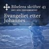 KABB - Evangeliet etter Johannes (Bibel2011 - Bibelens skrifter 43 - Det Nye Testamentet) artwork