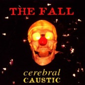 The Fall - I'm Not Satisfied