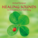Gong Sound - Michael Ramjoué