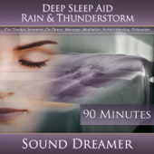 Rain & Thunderstorm (Deep Sleep Aid) [For Tinnitus, Insomnia, De-Stress, Massage, Meditation, Holistic Healing, Relaxation] [90 Minutes]