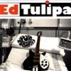 Ed Tulipa