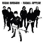 Radio Birdman - The Man With the Golden Helmet